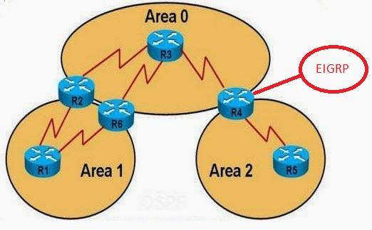 نقش های که روتر در OSPF می تواند داشته باشد
