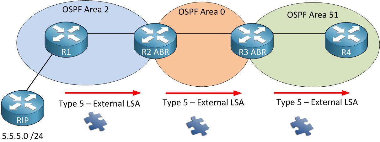 انواع LSA در OSPF - Type5