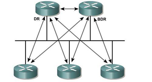 مفهوم DR و BDR و نحوی انتخاب آنها