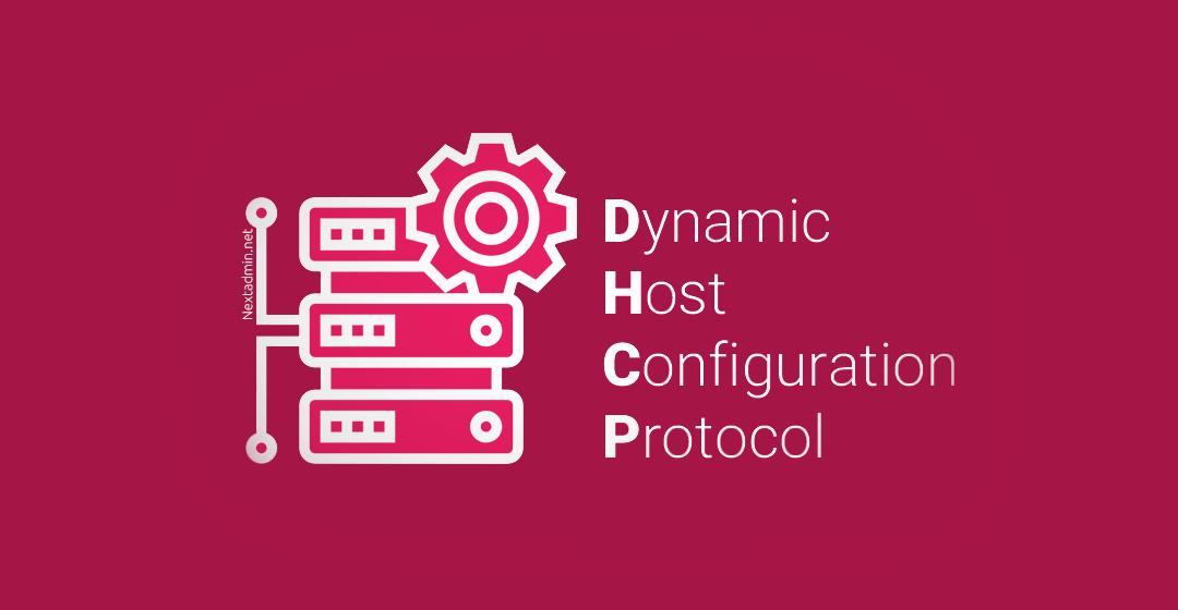 DHCP Dynamic Host Configuration Protocol - آموزش CCNA : معرفی DHCP و پیاده سازی آن در سیسکو