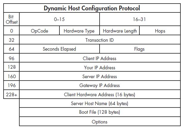 ساختار یک بستهی DHCP