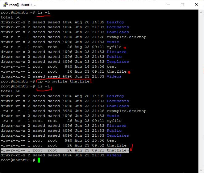 -b (--backup) will make backups of overwritten files   آموزش لینوکس: مدیریت مقدماتی فایل ها در لینوکس (Perform basic file management)