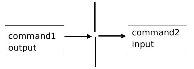 پایپ Piping ( | ) در لینوکس | پردازش متون با فیلترها