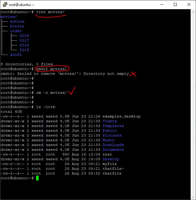 حذف دایرکتوری   آموزش لینوکس: مدیریت مقدماتی فایل ها در لینوکس (Perform basic file management)