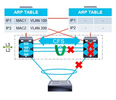 vPC ARP Sync
