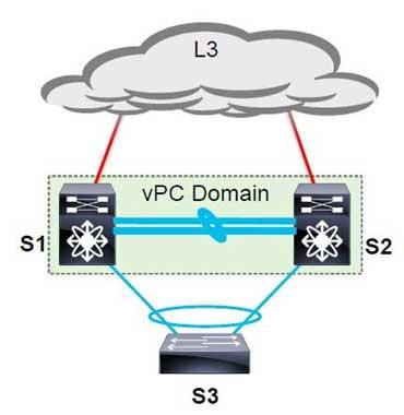 vPC Domain