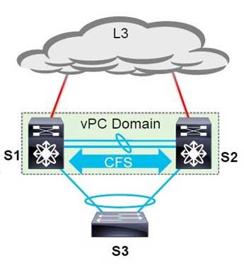 Cisco Fabric Services Protocol