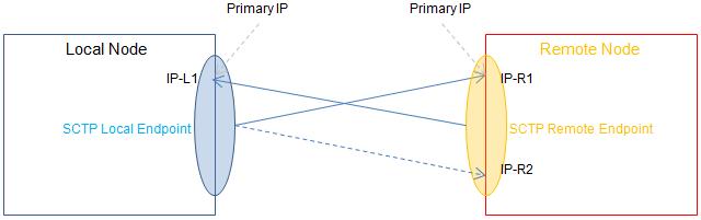 Asymmetric multi homing: Local Single homing - Remote multi homing